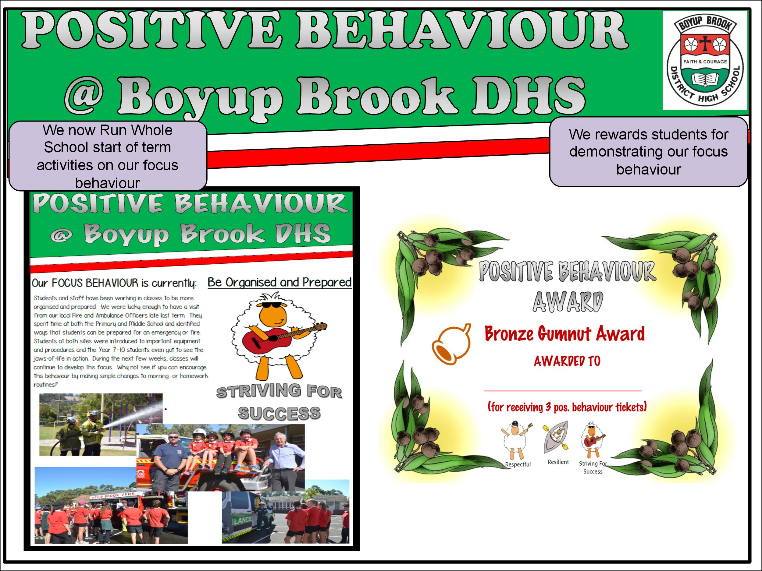 Positive Behaviour Support Page 18
