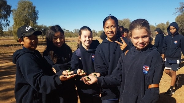 Desert Knowledge Australia