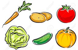 4961638-vegetables-vector-illustration.jpg