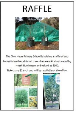 Tree Poster.JPG