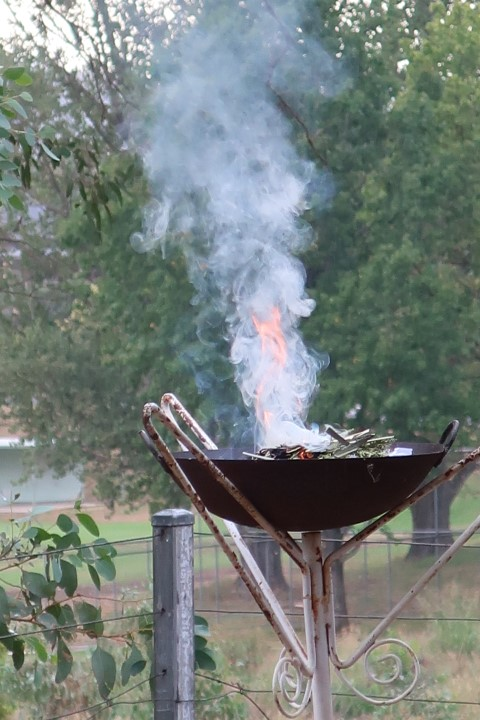 ahses burning - shrove tuesday 2019 (10) (Small)