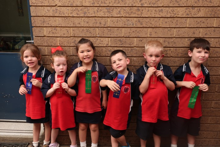 Cross country K-6 (1) (Small)