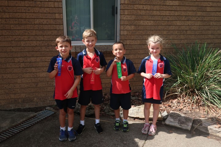 Cross country K-6 (13) (Small)