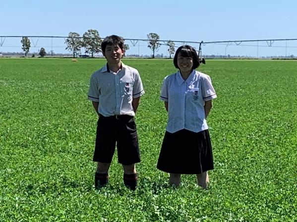 Japanese_students.jpg