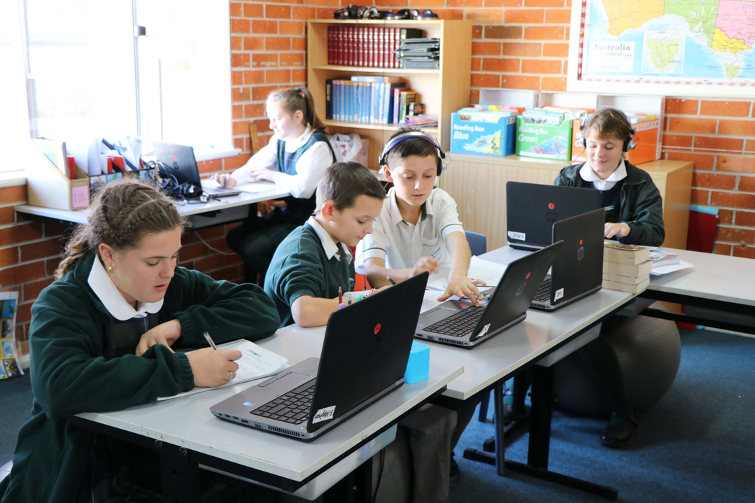 students working on their laptop